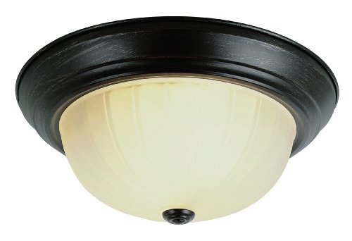 Trans Globe Lighting 13213-1 ROB 2-Light Flush-Mount, Rubbed Oil Bronze by Trans Globe Lighting