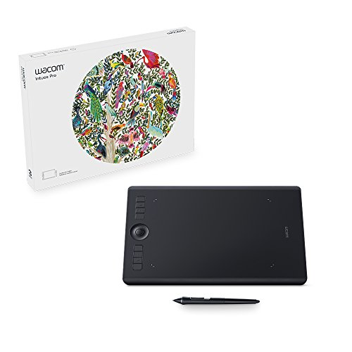 Wacom Intuos Pro Pen Tablet (Size: M) / Medium Professional Graphic Tablet incl. Wacom Pro Pen 2 Stylus with Replacement Tips / Compatible with Windows & Apple