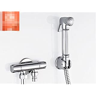 WP All Copper Toilet pressurized Gun/One into Two Bidet Bidet Nozzle Sets/Rinse Faucet-C