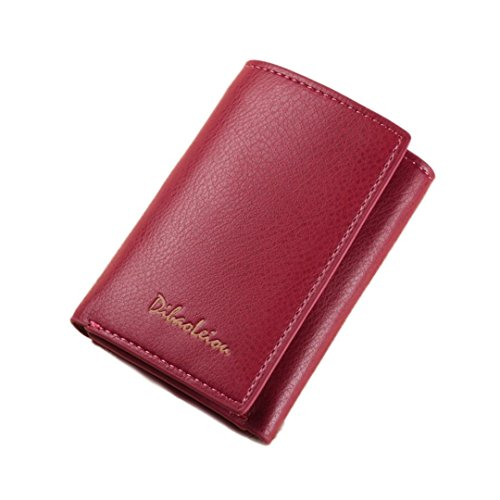 Portafoglio Donna, Tpulling Portafogli unisex Portafoglio in pelle borsa in pelle Portafogli Handy (B) C