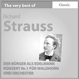 Konzert No. 1 Für Waldhorn Und Orchester, Es-Dur, Op. 11 - Ii. Andante