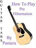 How To Play Pre Hibernation By Pantera - Guitar Tabs