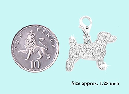 Jack Russell Terrier, Clip On ciondolo in cristallo per braccialetto, cerniera, Borsa, custodia, borsa o Pet Collar