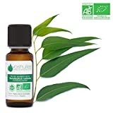 Huile Essentielle BIO d'Eucalyptus Radiata - 20ml