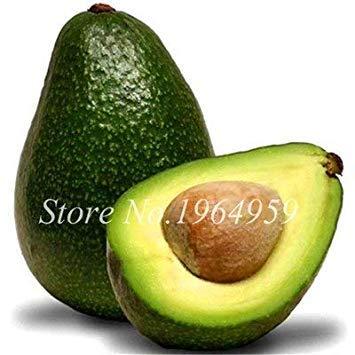. 10 pezzi misti avocado semi delicious verde frutta persea americana mill pera alimenti seed facile da coltivare per la casa della pianta di giardino: 1