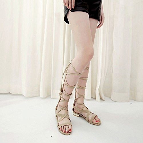COOLCEPT Hot Sale Mode Femmes Dentelle Knee High Gladiateur Appartements Sandales with Fermeture Eclairs 1167 Beige