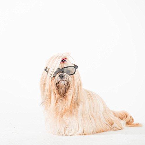 Pet Head Puppy Fun Hypoallergisches Shampoo, 475 ml - 5
