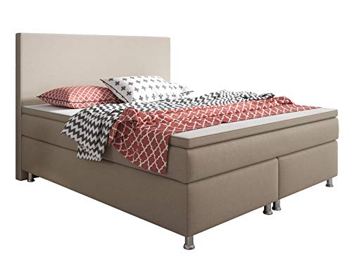 Inter King Size Boxspringbett Muddy 200 x 180 x 60 cm