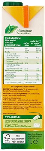 Berief Haferdrink, 12er Pack (12 x 1 l Packung) - Bio - 5
