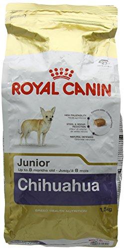 Royal Canin Chihuahua Junior sacco kg 1,5 Cibo secco Cani