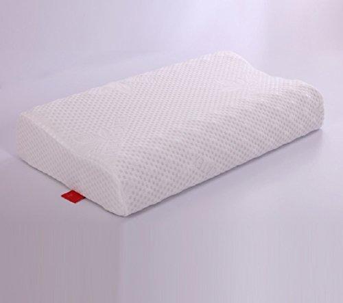taie-doreiller-latex-confortable-simple-taie-doreiller-a-40x60cm16x24inch