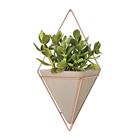 Umbra Trigg 470752-633 Modern Wall Vase, Flower Pot Wall Decoration with Metal Frame, White/Copper