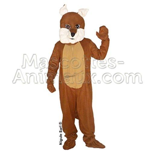 Maskottchen Kostüm Känguru. Kostüm Karneval (Maskottchen Känguru Kostüm)