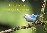 Costa Rica - Vögel des Regenwaldes (Wandkalender 2020 DIN A4 quer): Vögel des Regenwaldes Costa Ricas in ihrer ganzen Pracht (Monatskalender, 14 Seiten ) (CALVENDO Tiere) -