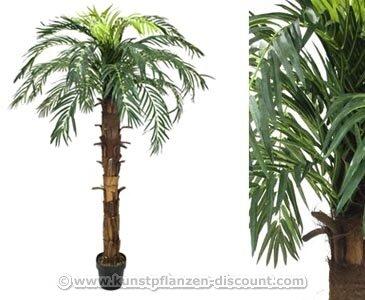 Künstliche Palme Cocos, Höhe 160cm – Kunsblumen künstliche Blumen Kunstpflanzen künstliche Pflanzen Blumen