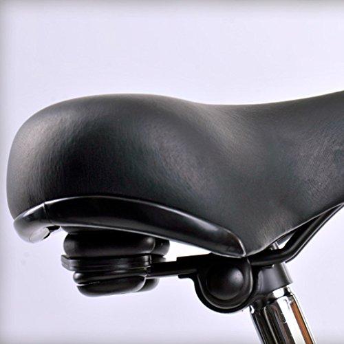 41Ss6qcbi1L. SS500  - HOLLANDER, classic Dutch bike, black, single-speed, frame size 56cm