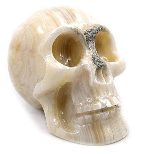 ragonit Totenkopf Figur, 8,3cm Hoch, 10,2cm Lang, 6,3cm Breit (680), Geschnitzt aus Echt North American Weiß Onyx Aragonit-der Artisan abgebautem Serie von HBAR ()