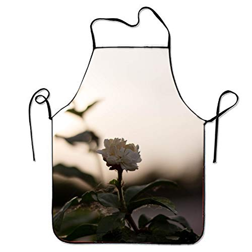 False warm warm Flower Sunlight Shadow Kitchen Cooking Apron for Women and Men Adjustable Neck Strap Restaurant Home Kitchen Apron Bib for Cooking, BBQ Shadow Smock