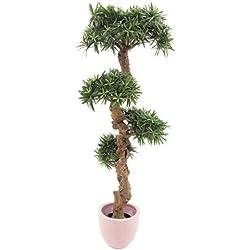 Bonsai-palmera 180 cm
