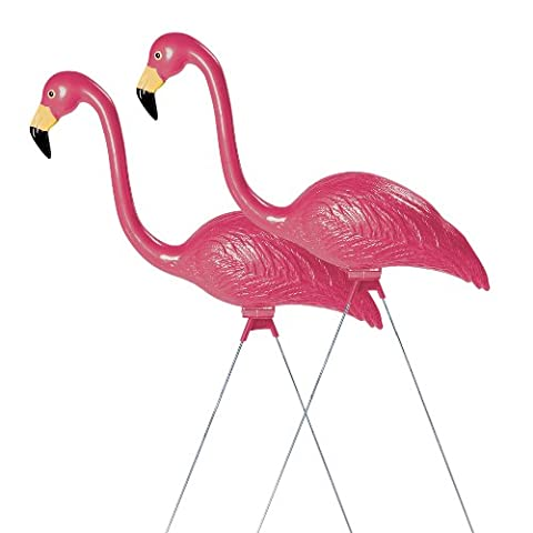Sculptural Gardens by Heritage Farms Pink Flamingo Pair, Lawn Ornament