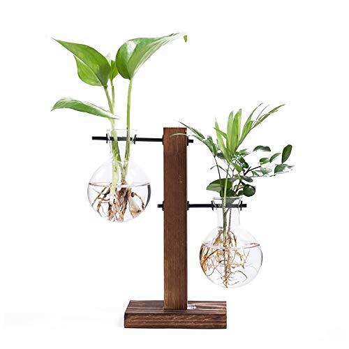 Leaftree Florero de Vidrio para macetas con Soporte Retro de Madera Maciza y Soporte Giratorio de Metal para Plantas hidropónicas Home Garden Wedding Decor