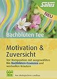 BACHBLÜTEN Tee Motivation & Zuversicht Bio Salus 15 St