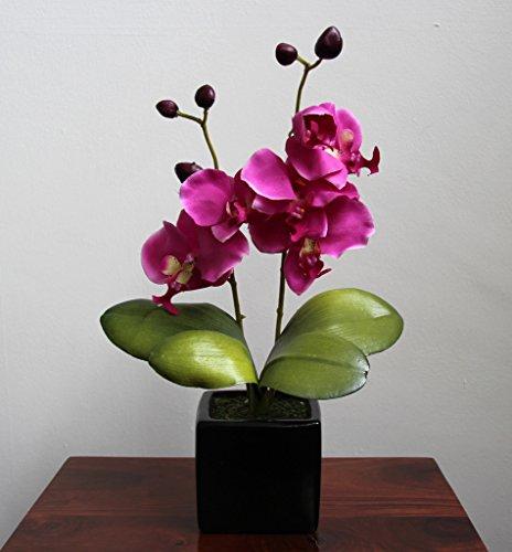 Homescapes Kunstblume Orchidee pink in schwarzem Keramik Topf Höhe ca. 35 cm Kunstpflanzen mit Topf, Künstliche Pflanzen klein