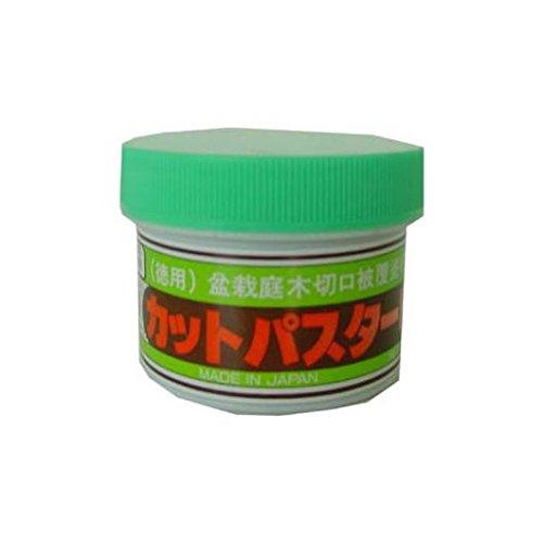 mistral-bonsi-pasta-sigillante-conferas-barattolo-160gr