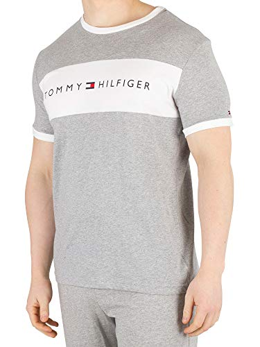 75e2972c84fdfc New tommy hilfiger tops t shirts the best Amazon price in SaveMoney.es