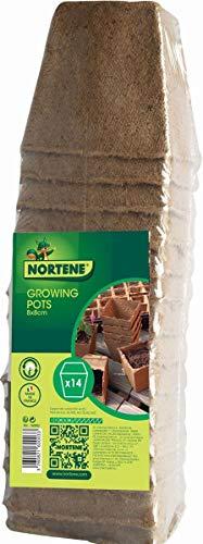 NORTENE 14 Pots pour semis Growing Pots- 100% biodégradables - 8 x 8 cm