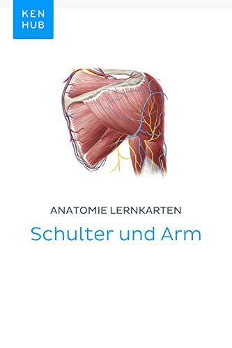 Anatomie Lernkarten: Schulter und Arm: Lerne alle Knochen, Ligamente ...