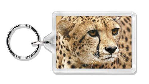 Advanta - Keyrings Gepard Foto Schlüsselbund TierstrumpffüllerGeschenk
