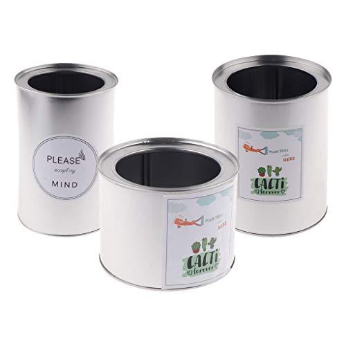 Non-brand sharplace 3 pezzi vasi da fiori ferro stile vintage rurale per piante accessori casa hotel