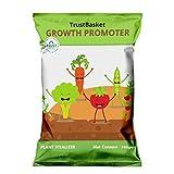 Liquid Lawn Fertilizers Review and Comparison