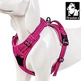 XDYFF Haustier Weste Harness für Hunde explosionssichere, reflektierende Gurte mit Griff an der Oberseite Einfacher Auf- und Ausstieg mit Sicherheitsschnalle für große Hunde,Rosered,S