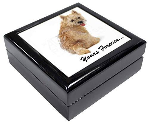 Advanta - Jewellery Boxes Cairn Terrier Hund Yours Forever. Andenken/Schmuck Box Weihnachten Geschenk -