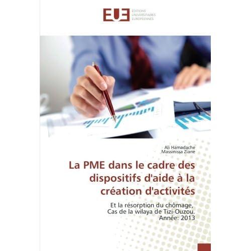 La PME dans le cadre des dispositifs d'aide A la creation d'activites: Et la resorption du chômage, Cas de la wilaya de Tizi-Ouzou. Annee: 2013