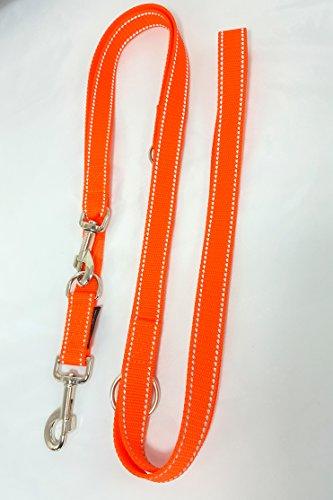 Hundeleine Doppelleine Gurtband reflektierend 25mm 2,40m orange 3fach verstellbar für große und kräftige Hunde
