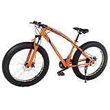Riscko Bicicleta Fat Bike Todoterreno con Ruedas de 26x4 Pulgadas antipinchazos y Cambio Shimano (Oro)