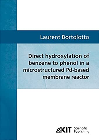 Direct hydroxylation of benzene to phenol in a microstructured Pd-based membrane reactor: Theoretische Analyse und (Kit Pd)
