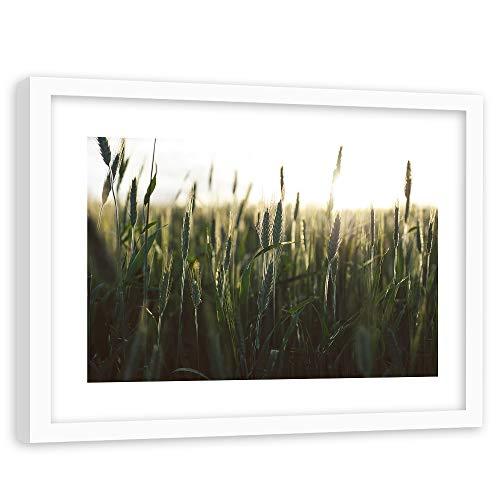 Tableau Cadre Blanc Nature Impression Art Paysage Blé Forment Vert 90x60 cm