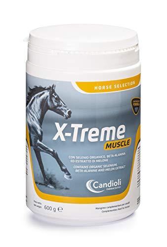 Candioli X-Treme Muscle 600 g