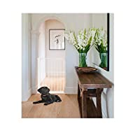 Bettacare Wide Walkthrough Narrow Pet Gate 62.5cm - 69.5cm (White)