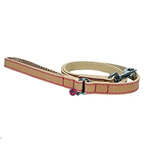 Rosewood-Luxury-Leather-Dog-Lead-40-x-34-inch-Tan