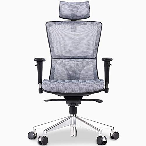 HTOLLA Ergonomischer Mesh-Bürostuhl mit hoher Rückenlehne und Verstellbarer Kopfstütze,Gray,B
