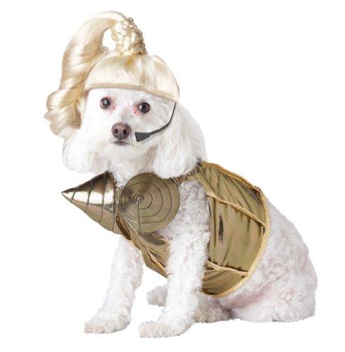 Pup-A-Razzi Pop Queen Hund Kostüm, Gold (Queen Of Pop Kostüm)