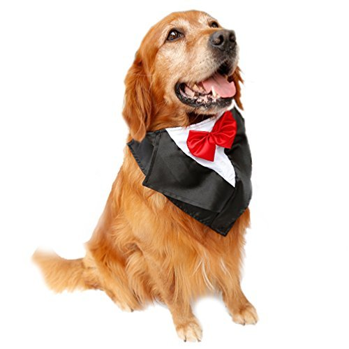 Kostüm Einfache Buddy - SGODA Hund Hochzeit Smoking Große Hunde Bandana mit Fliege, Large, Rot