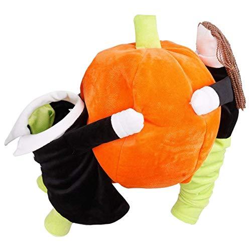 Xigeapg Haustier Hund Katze Tragen Kürbis Halloween Party Phantasie Kostüm Jacke Bekleidung (Gro?)