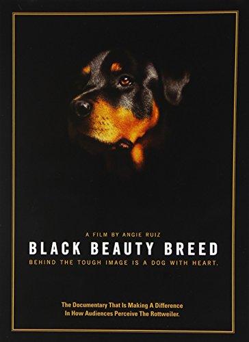 black-beauty-breed-dvd-import
