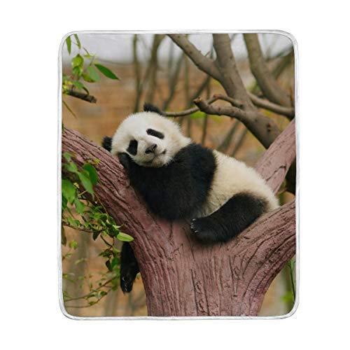 CPYang - Manta Microfibra Suave diseño Panda árbol